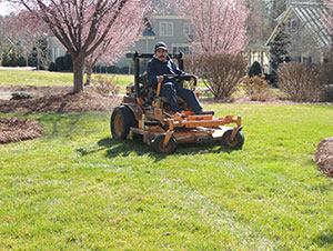 Professional Lawn Care in Mooresville NC