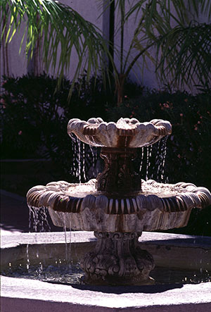 Water Features and Water Gardens
